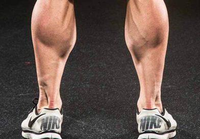 عضلات ساق پا