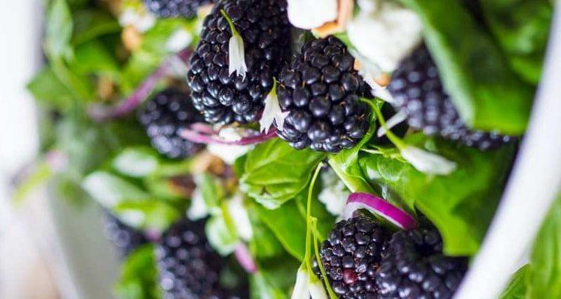 سالاد توت سیاه