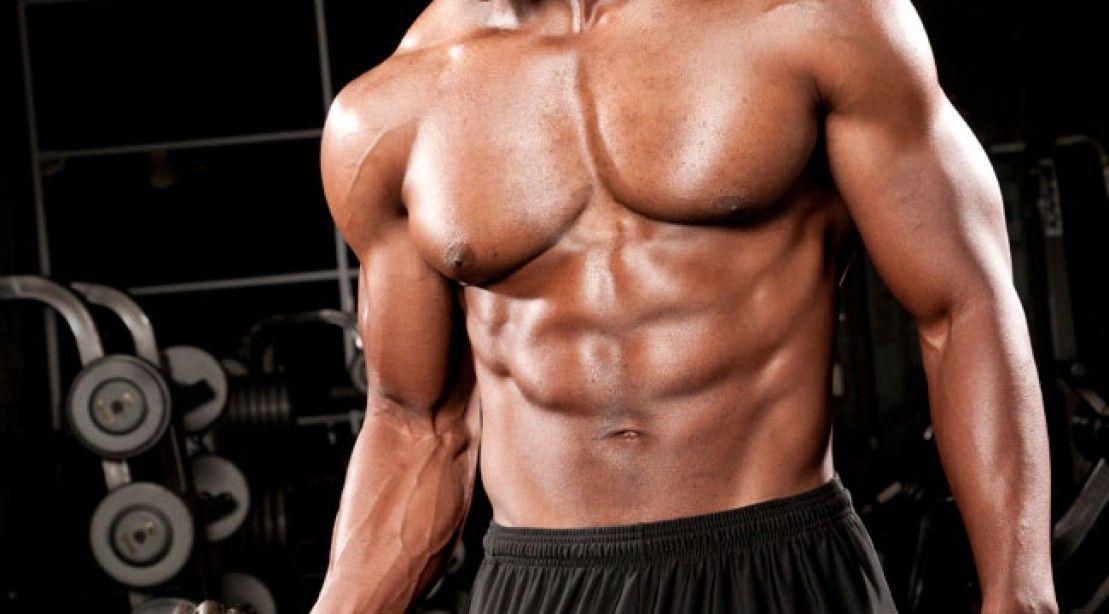 عضلات سینه ای