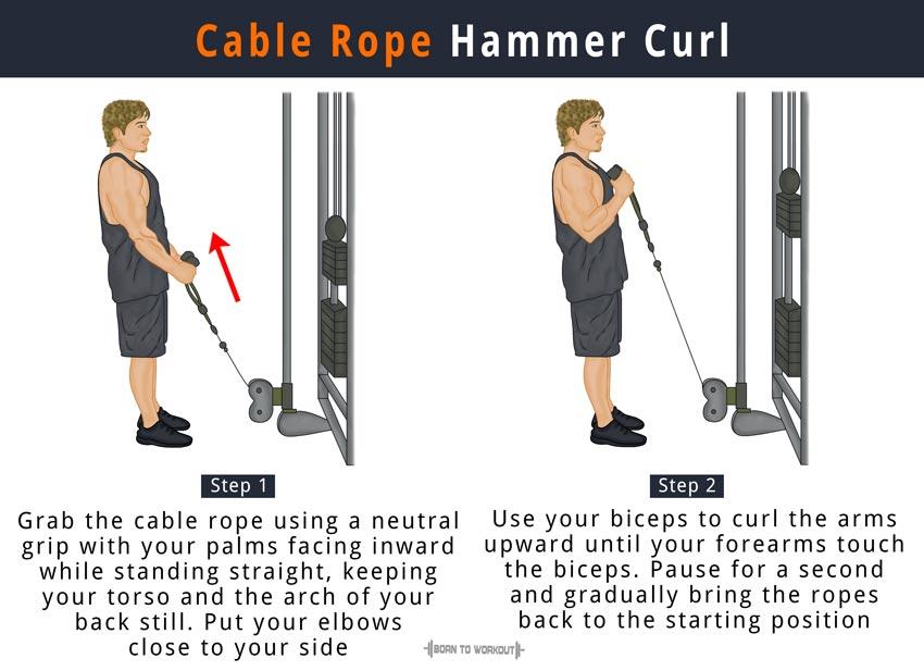 Cable Rope Hammer Curl min - آموزش حرکت جلو بازو سیم کش چکشی در بدنسازی