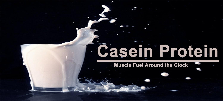 Casein Protein min - پروتئین کازئین