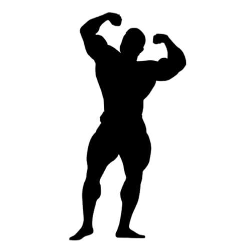 fitness3 - برنامه کامل تمرین + رژیم غذایی اختصاصی 3 ماهه