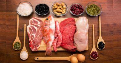 khvi11 min 390x205 - معرفی چند ماده غذایی با پروتئین بالا