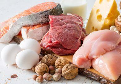 مزایای مصرف پروتئین های حیوانی